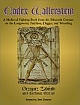 VMP: Codex Wallerstein: A Medieval Fighting Book from the Fifteenth Century on the Longsword, Falchion, Dagger, and Wrestling